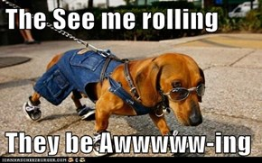 The See me rolling  They be Awwwww-ing