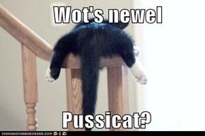 Wot's newel                Pussicat?
