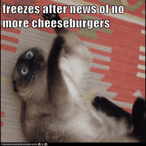 freezes after news of no more cheeseburgers