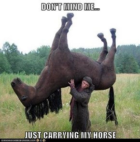 DON'T MIND ME...  JUST CARRYING MY HORSE