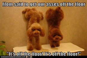 """Mom said to get our asses off the floor  """"It's off the floor! It's off the floor!"""""""