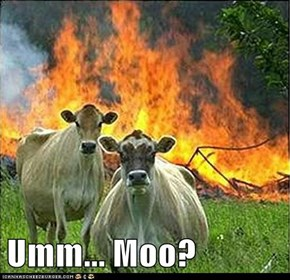 Umm... Moo?
