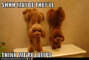 SHHH MAYBE THEY'LL  THINK WE'RE LAMPS