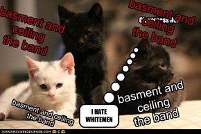 basment and ceiling the band