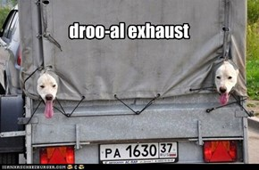 droo-al exhaust