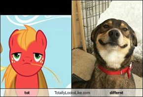 tot Totally Looks Like differnt