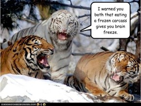 I warned you both that eating a frozen carcass gives you brain freeze.