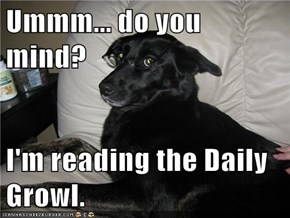 Ummm... do you mind?  I'm reading the Daily Growl.