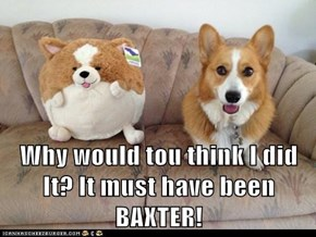Why would tou think I did It? It must have been BAXTER!