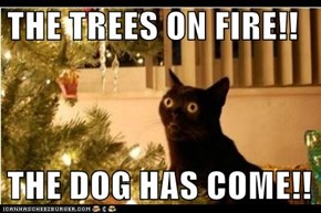 THE TREES ON FIRE!!  THE DOG HAS COME!!