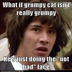 What if grumpy cat isn't really grumpy