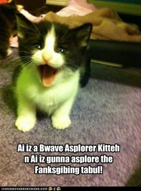 Bwave Asplorer Kitteh Thanksgiving