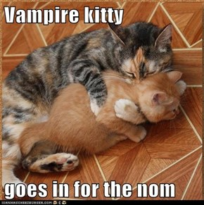 Vampire kitty  goes in for the nom