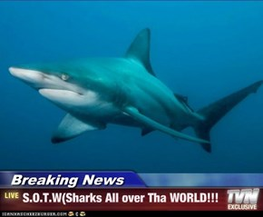 Breaking News - S.O.T.W(Sharks All over Tha WORLD!!!
