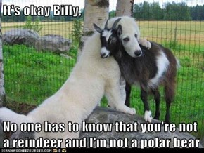 It's okay Billy,  No one has to know that you're not a reindeer and I'm not a polar bear