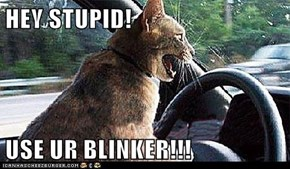 HEY STUPID!  USE UR BLINKER!!!