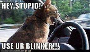 HEY STUPID!  USE UR BLINKER!!!