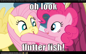 oh look  flutter fish!