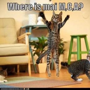 Where is mai M,C,A?