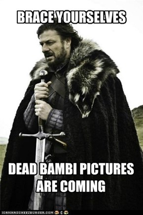 DEAD BAMBI PICTURES ARE COMING