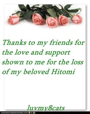 Thanks to my friends for the love and support shown to me for the loss of my beloved Hitomi  luvmy8cats