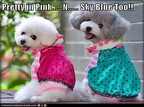 Pretty in Pink......N...... Sky Blue Too!!