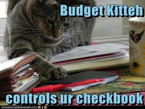 Budget Kitteh  controls ur checkbook