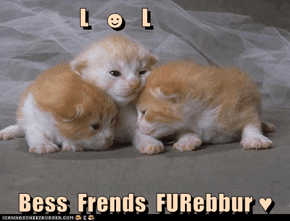 L   ☻   L  Bess  Frends  FURebbur ♥