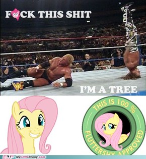 Fluttershy approves!