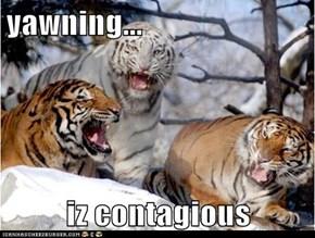 yawning...  iz contagious