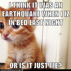 I THINK IT WAS AN EARTHQUAKE WHEN I IZ IN BED LAST NIGHT  OR IS IT JUST ME?