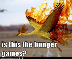 is this the hunger games?
