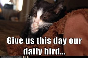 Give us this day our daily bird...