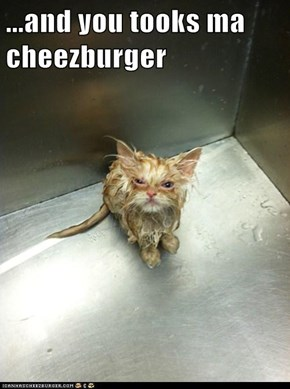 ...and you tooks ma cheezburger