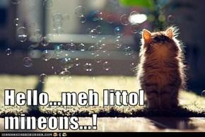Hello...meh littol mineons...!