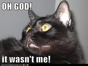 OH GOD!  it wasn't me!