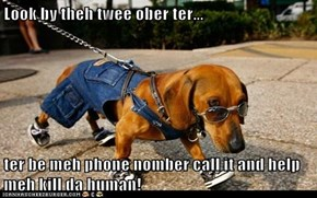 Look by theh twee ober ter...  ter be meh phone nomber call it and help meh kill da human!