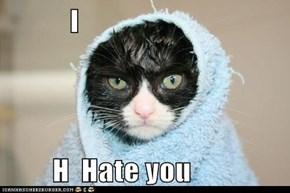 I           H  Hate you