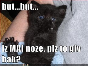 but...but...  iz MAI noze. plz to giv bak?