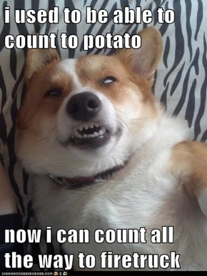 i used to be able to count to potato  now i can count all the way to firetruck