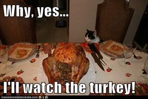 Why, yes...  I'll watch the turkey!