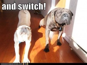 and switch!