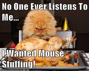 No One Ever Listens To Me...  I Wanted Mouse Stuffing!