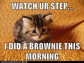 WATCH UR STEP...  I DID A BROWNIE THIS MORNING