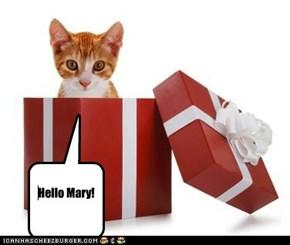 Hello Mary!