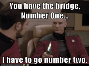 You have the bridge, Number One...  I have to go number two.
