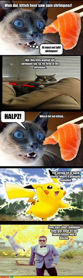 Why kittehs should beh carfull
