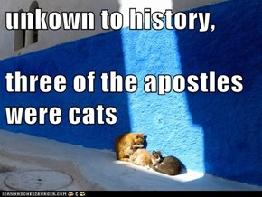 unkown to history,  three of the apostles were cats