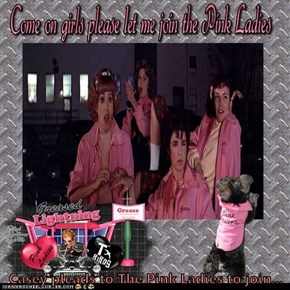 Casey pleads to The Pink Ladies to join...