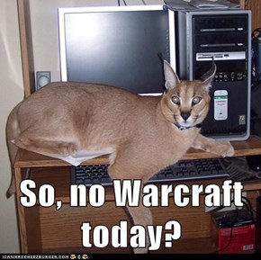 So, no Warcraft today?